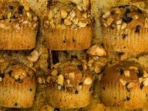 Plátano y chocolate Chip Muffins Imagen de archivo libre de regalías