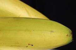 Plátanos Foto de archivo libre de regalías