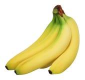 Plátanos. Imagenes de archivo