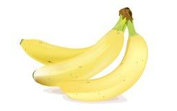 Plátanos Fotografía de archivo