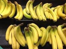 Plátanos imágenes de archivo libres de regalías