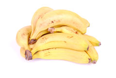 Plátanos africanos Fotos de archivo libres de regalías