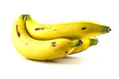Plátanos aislados Imagen de archivo libre de regalías