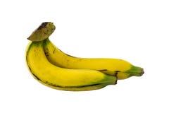 Plátanos aislados Imagenes de archivo