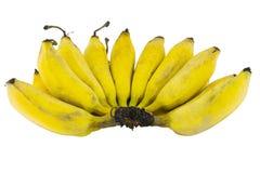 Plátanos aislados en blanco Imagen de archivo