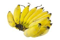 Plátanos aislados en blanco Imagen de archivo libre de regalías