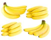 Plátanos aislados en el fondo blanco Imagen de archivo