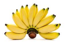 Plátanos aislados en el fondo blanco Imágenes de archivo libres de regalías