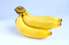 Plátanos amarillos en el fondo blanco Fotos de archivo libres de regalías