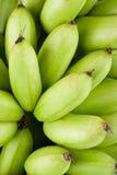 Plátanos crudos verdes del huevo de Oganic en la comida sana de la fruta de Pisang Mas Banana del fondo blanco aislada Fotografía de archivo
