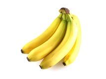 Plátanos del estudio Imagen de archivo