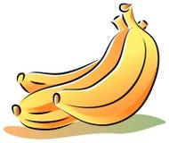 Plátanos del vector Foto de archivo libre de regalías