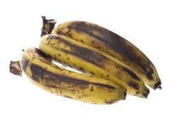 Plátanos demasiado maduros aislados Fotografía de archivo