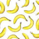 Plátanos en el fondo blanco Modelo inconsútil Ilustración de la acuarela Fruta tropical Trabajo hecho a mano Imagen de archivo