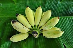 Plátanos en una hoja del plátano Fotografía de archivo libre de regalías