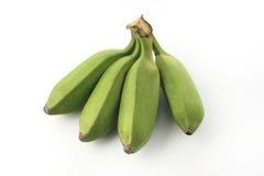 Plátanos inmaduros verdes Imágenes de archivo libres de regalías