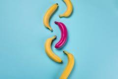 Plátanos maduros amarillos y rosa uno aislados en azul Foto de archivo libre de regalías