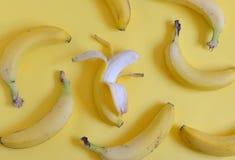Plátanos maduros fijados Fotografía de archivo libre de regalías