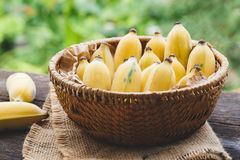 Plátanos maduros frescos Fotografía de archivo libre de regalías