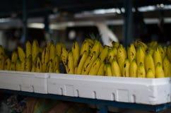 Plátanos orgánicos asombrosos de Imágenes de archivo libres de regalías