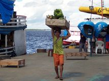 Plátanos que llevan del trabajador Imagen de archivo libre de regalías