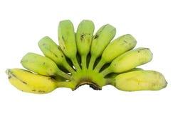 Plátanos verdes aislados Fotografía de archivo