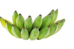 Plátanos verdes aislados Imágenes de archivo libres de regalías
