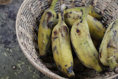 Plátanos verdes madurados imagen de archivo libre de regalías