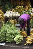 Plátanos y cocos en una parada del mercado Foto de archivo