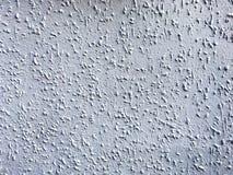 Plâtre blanc Image stock