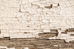 Plâtre et bois Photos stock