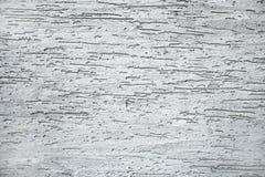 Plâtre gris Image libre de droits