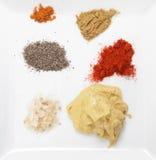 Plätera av kryddor och smaktillsatser Royaltyfria Bilder