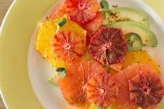 Plätera sunda clos för avokadot för grapefrukten för apelsiner för sommarfruktsallad arkivfoto