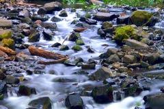 Plätschernder Strom nah an Multnomah fällt Oregon Stockfotografie
