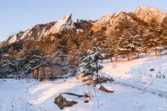 Plätteisen und Glockenblume-Picknick-Schutz bei Sonnenaufgang lizenzfreie stockfotos