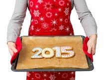 Plätzchen des neuen Jahres Stockbild