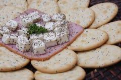 Plätzchen mit Käse Lizenzfreies Stockbild