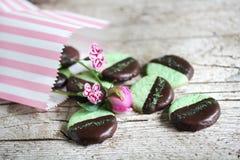 Plätzchen mit tadelloser und dunkler Schokolade in einer Plätzchentasche Stockbild