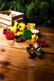 Plätzchenschneider für die Herstellung von Weihnachtsplätzchen Lizenzfreie Stockfotos