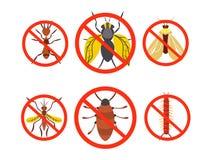 Plågauppsättningkontroll skadligt skalbaggar, kryp också vektor för coreldrawillustration royaltyfri illustrationer