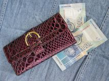 Plånbok med pengar Royaltyfria Bilder