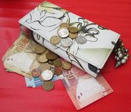 Plånbok med pengar Arkivfoto