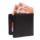 Plånbok med serbiska pengar Arkivfoton