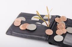 Plånbok och mynt som isoleras på en vit bakgrund Arkivbild