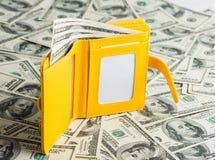Plånbok som vilar på Förenta staterna hundra dollar Arkivfoto