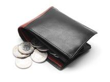 Plånboken med myntar royaltyfri bild