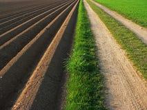 Plöjd jord bredvid vägen, jordbruks- bakgrund Royaltyfri Bild
