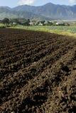 Plöjde jordjordbrukfält Arkivbild