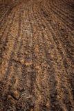 Plöjt fält, övre för jord nära jordbruks- bakgrund Royaltyfri Foto